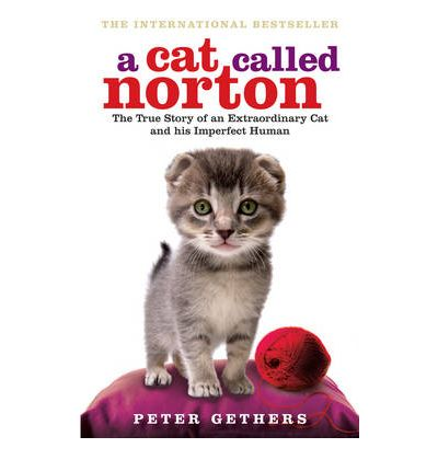 A Cat Called Norton : The True Story of an Extraordinary Cat and His Imperfect Human