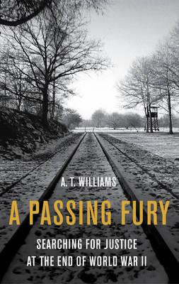 A Passing Fury : Searching for Justice at the War's End