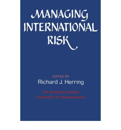 International business risk essays
