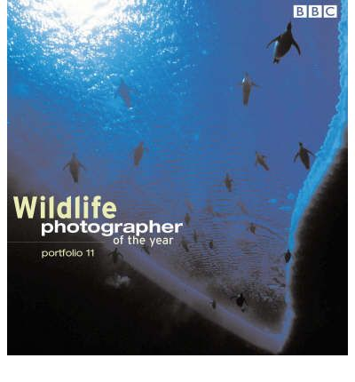 Wildlife Photographer of the Year Portfolio 11