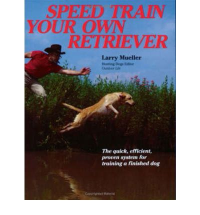 How To Train Your Hunting Dog Book