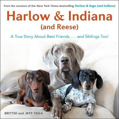 Harlow & Indiana (and Reese): A True Story About Best Friends... and Siblings Too!