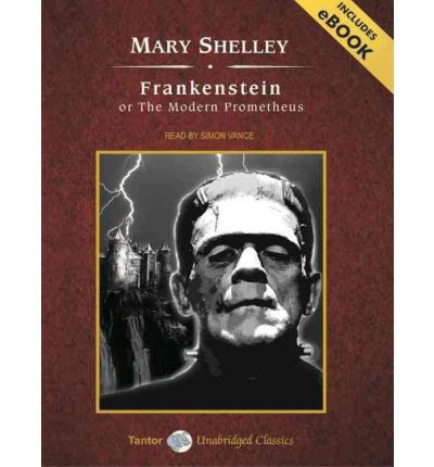 a report on mary shelleys frankenstein