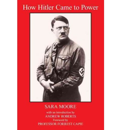 how hitler came to power essay