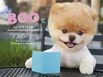 Boo the Dog