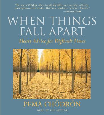When things fall apart essay