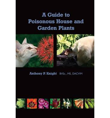A guide to poisonous house and garden plants anthony for Large non toxic house plants