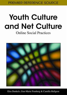 Internet and youth culture