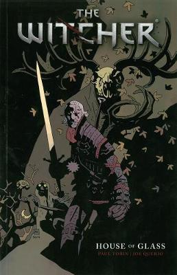 The Witcher: Volume 1