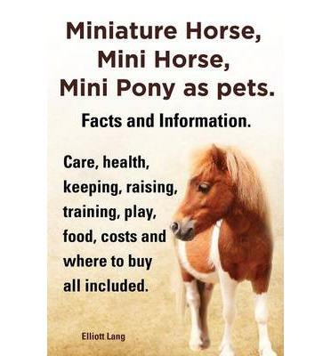 Where to buy a horse?