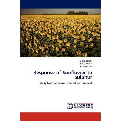 response to the book sunflower Exploring dimensions of forgiveness: to wiesenthal's question in the sunflower and analyze read and understand the response and be prepared to present.