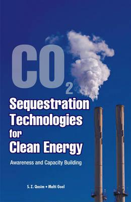 essay carbon sequestration technologies The fossil fuel sector is revved up now that the president has signed legislation to give a tax credit to coal, natural gas and oil companies that can capture or re-use their co2 releases.