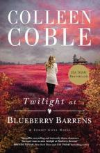 Twilight at Blueberry Barrens
