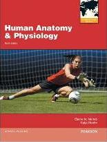 Human Anatomy & Physiology/interactive Physiology 10-system Suite CD-ROM (component)/a Brief Atlas of the Human Body (valuepack Only)