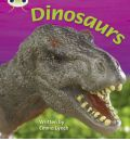 Dinosaurs: Non-Fiction Set 26