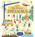 My Big Picture Thesaurus