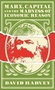 Marx, Capital and the Madness of Economic Reason